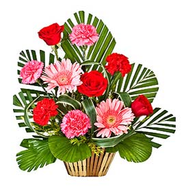 send same day  midnight flowers  delivery in Hyderabad